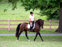 OCHC Mix and Match Dressage