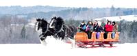 Eastern Draft Horse Association Sleigh Event