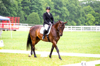 Old Chatham Horse Trials Dressage 7/10/16